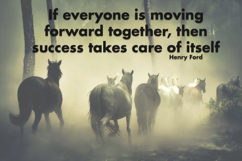 If everyone is moving forward together, then success takes care of itself.—Henry Ford